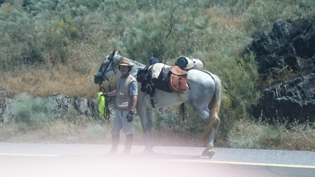 Cowboy doing the Camino